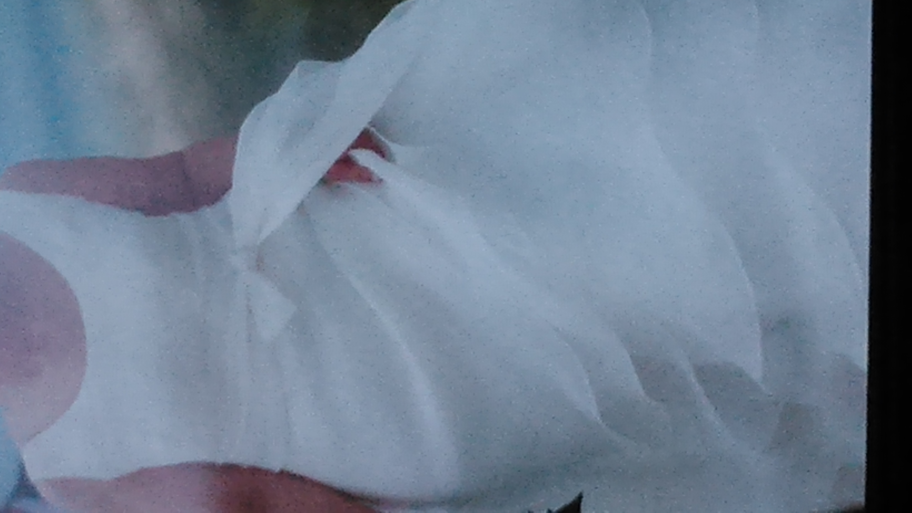 JESUS DEL POZO 2008 – T40 | Weddalia