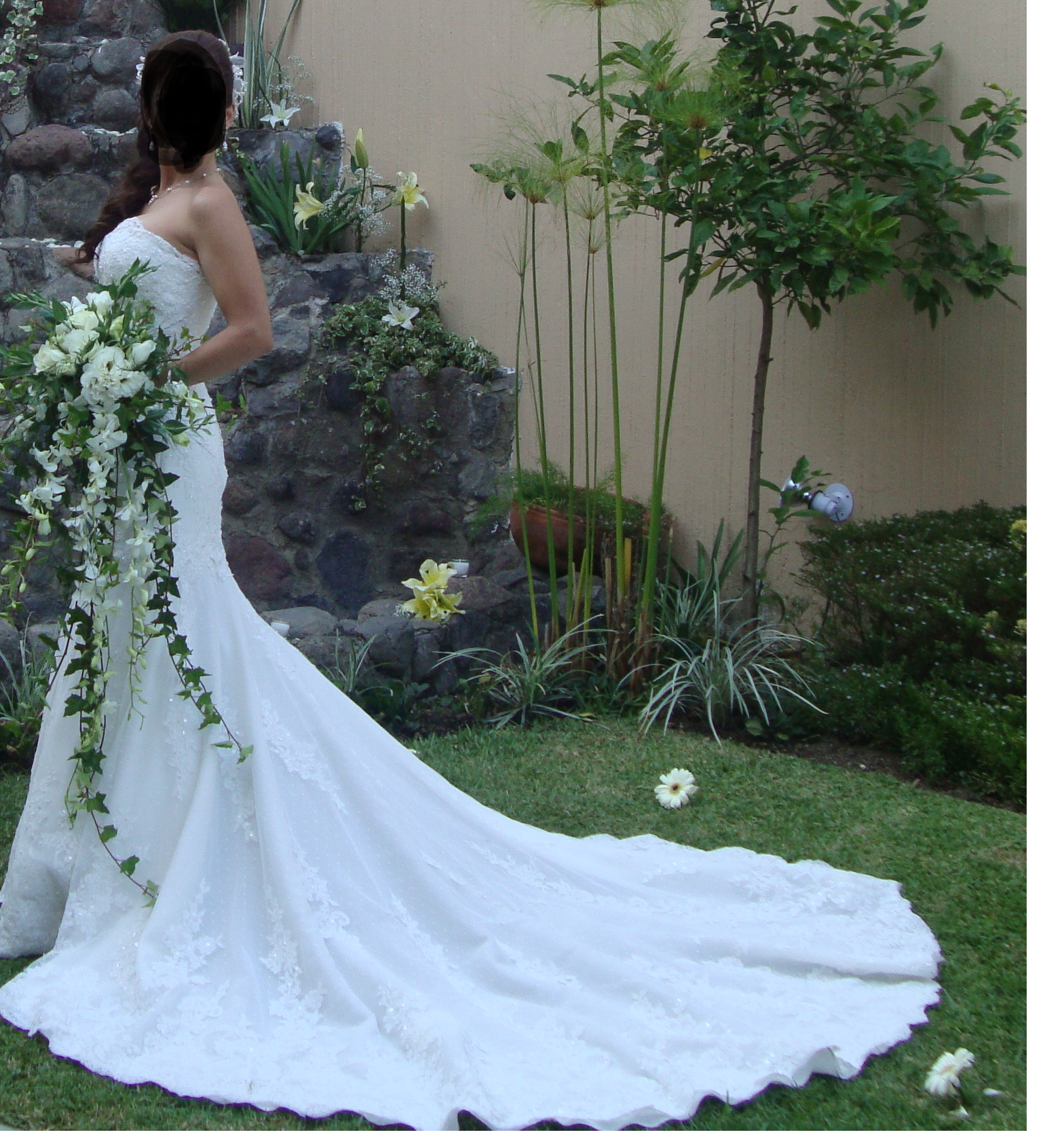 Vestidos de novia briden formal usados